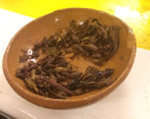 Chapulines- fried crickets in Mexico