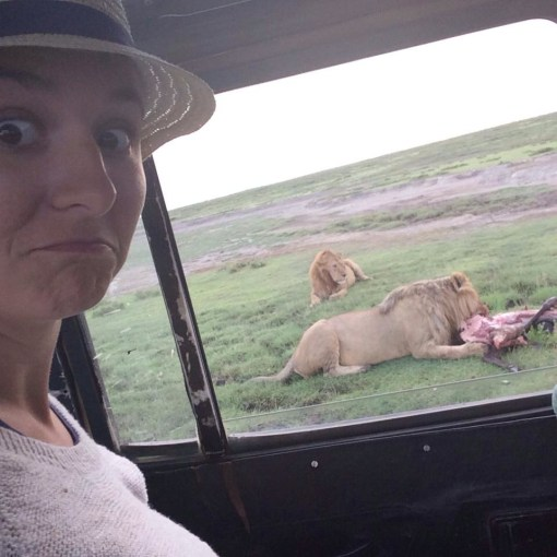Lions on the Serengeti in Tanzania