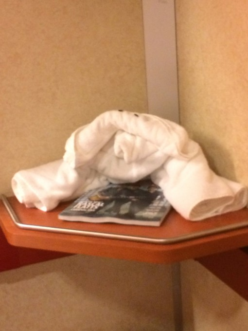 Weird towel animal from Carnival Cruise lines