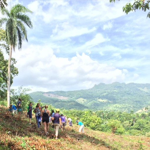 Planting Trees on the side of a mountain in Yasica City in the Dominican Republic