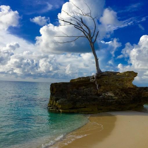 The beach at Resorts World Bimini in the Bahamas