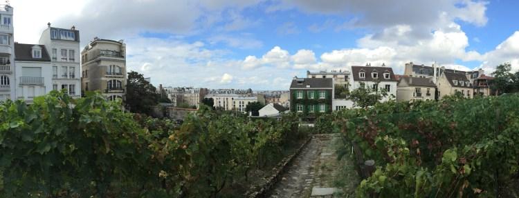 Montmartre's Hidden Vineyard - Mags on the Move