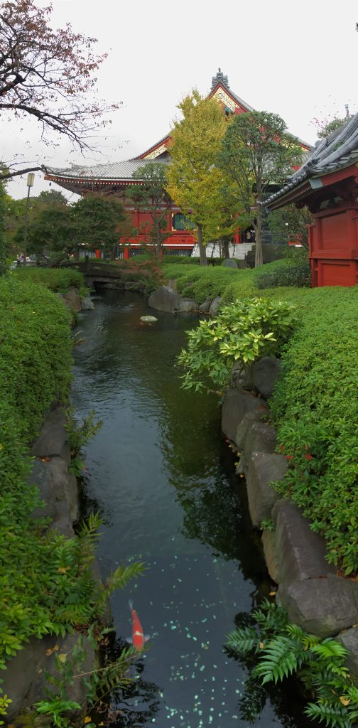 find your zin in Tokyo