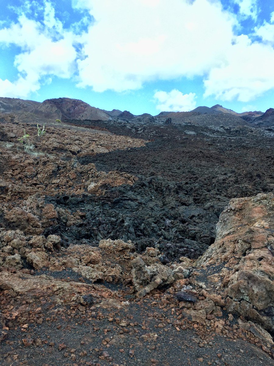 The line where the old lava meets new at Volcan Chico on Isla Isabela in the Galapagos Islands