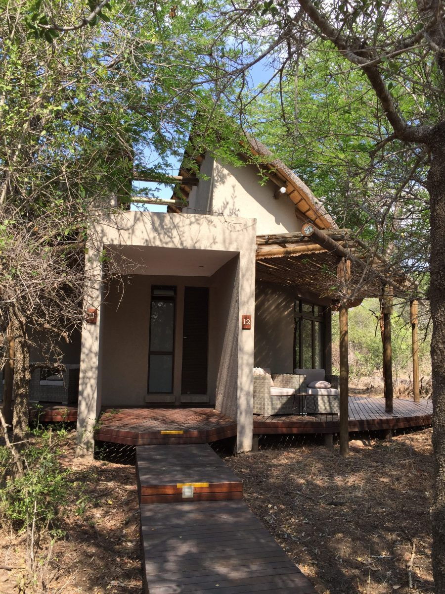 Gorgeous rooms at the Moditlo Lodge in Hoedspruit, South Africa just outside of Kruger National Park