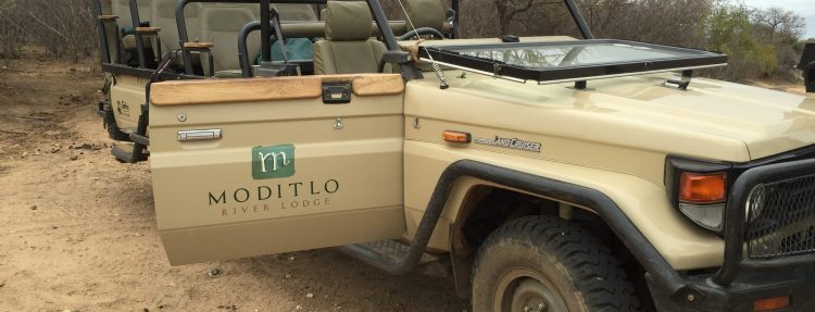 Moditlo River Lodge - Affordable South African Luxury - Mags On The Move