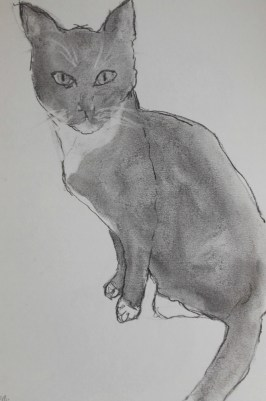 ~ Maude in charcoal