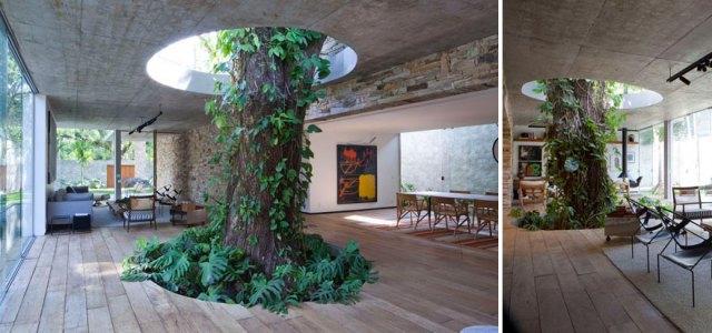 4-architecture-around-the-trees-4__880