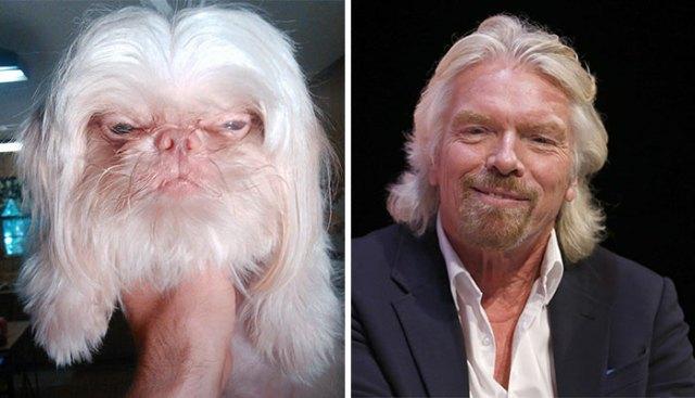6-celebrity-look-alikes-animals-42__700
