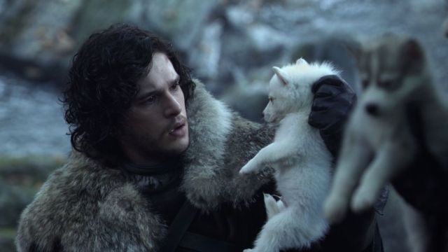 Jon Snow un Kurdu Ghost