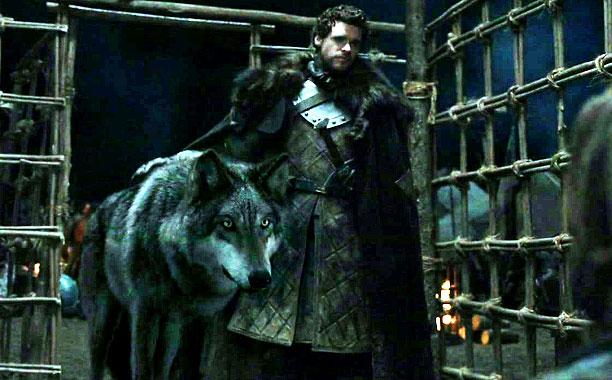 Robb Stark 'ın Kurdu - Grey Wind
