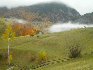 Season of mists and mellow fruitfulness in Piatra Craiului National Park