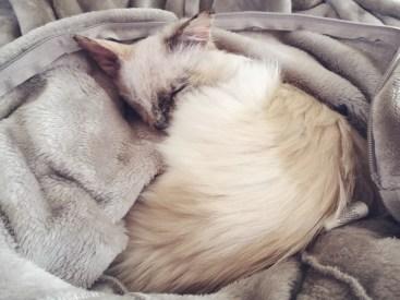 Cuddly in her onesie.