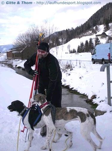 jaesper-skijoering-20081212-sammy