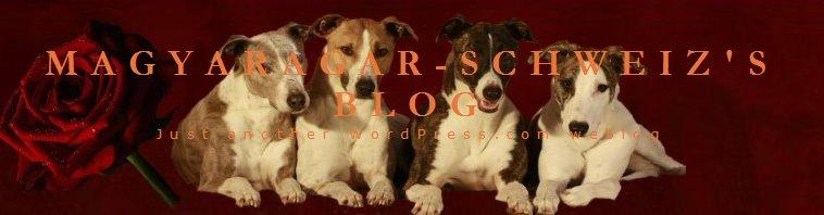 MagyarAgarSchweizBlog