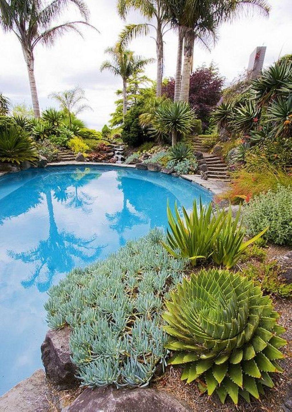 Incredible Cactus Garden Landscaping Ideas Best For Summer 11