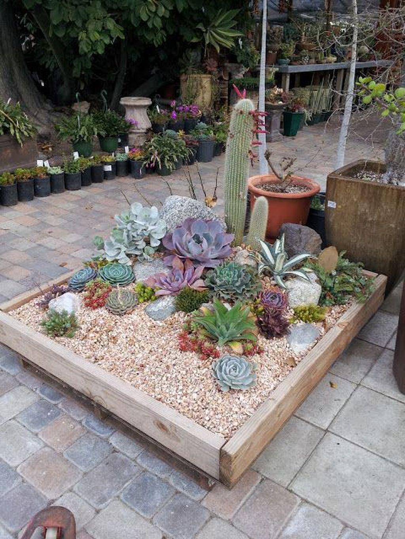 Incredible Cactus Garden Landscaping Ideas Best For Summer 20