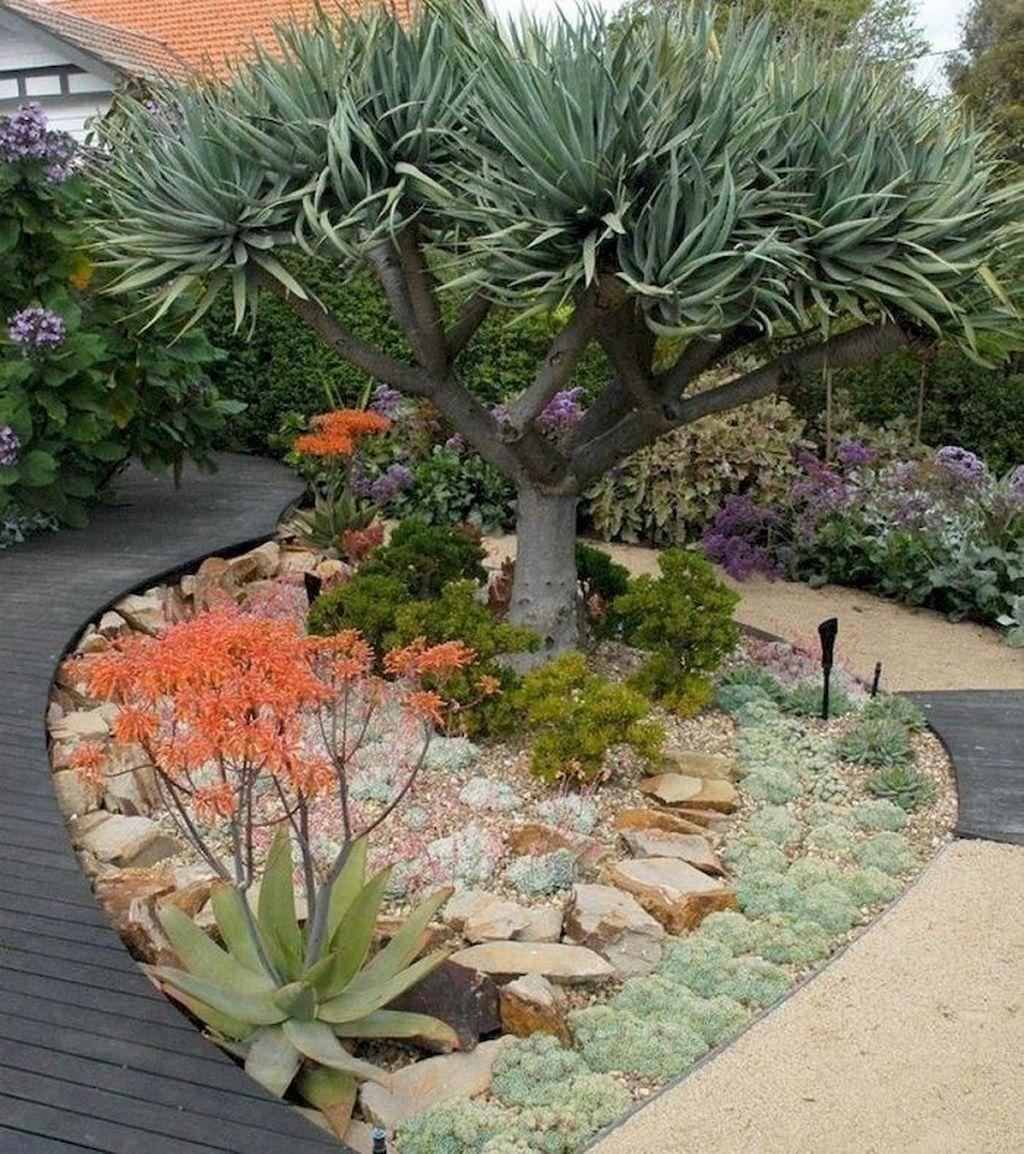 Incredible Cactus Garden Landscaping Ideas Best For Summer 28