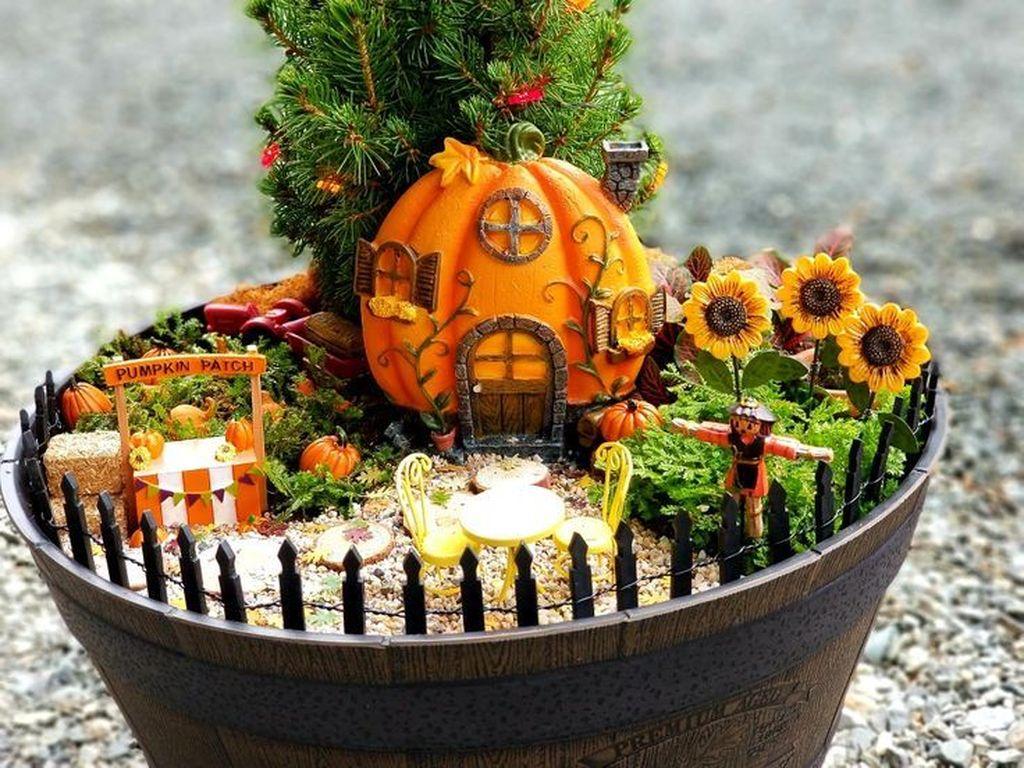 Beautiful Fall Fairy Garden Design Ideas 19