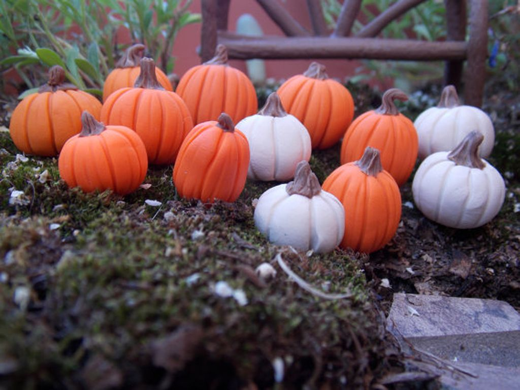 Beautiful Fall Fairy Garden Design Ideas 22