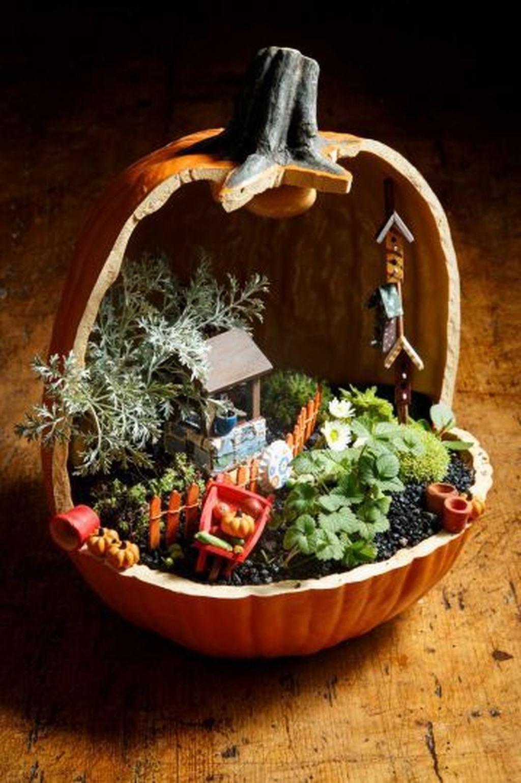 Beautiful Fall Fairy Garden Design Ideas 28