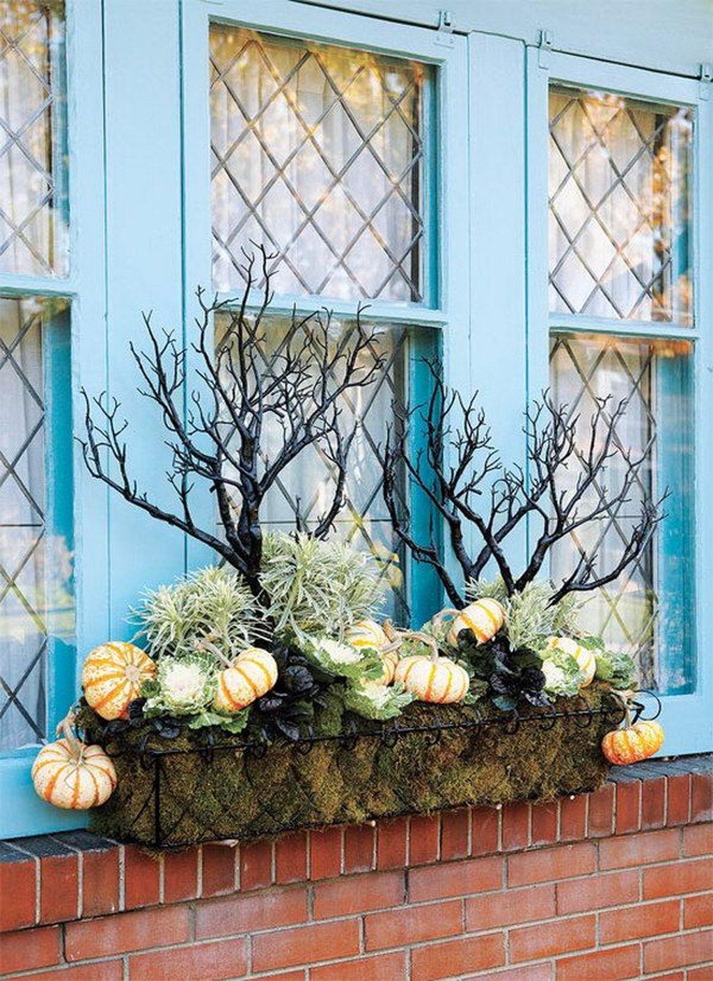 Beautiful Fall Window Boxes Design Ideas 05