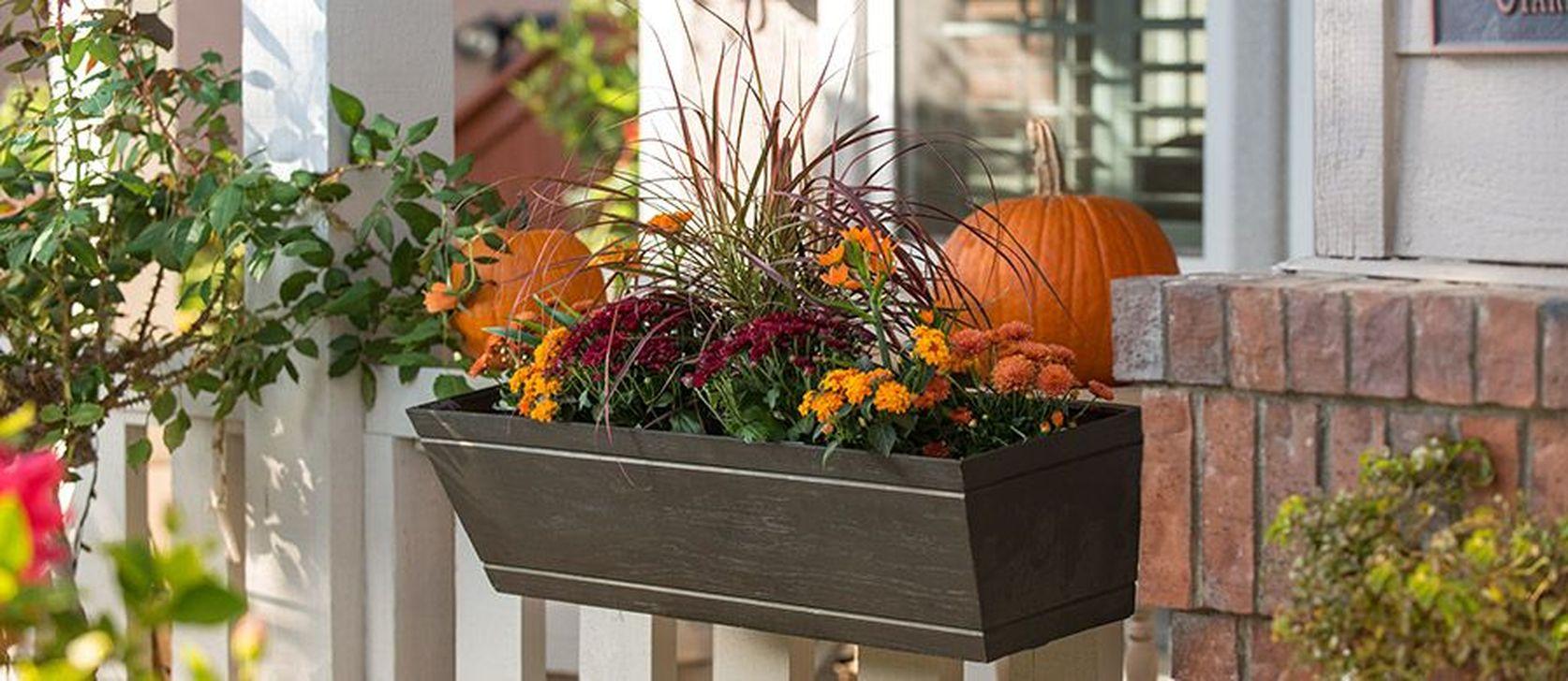 Beautiful Fall Window Boxes Design Ideas 14