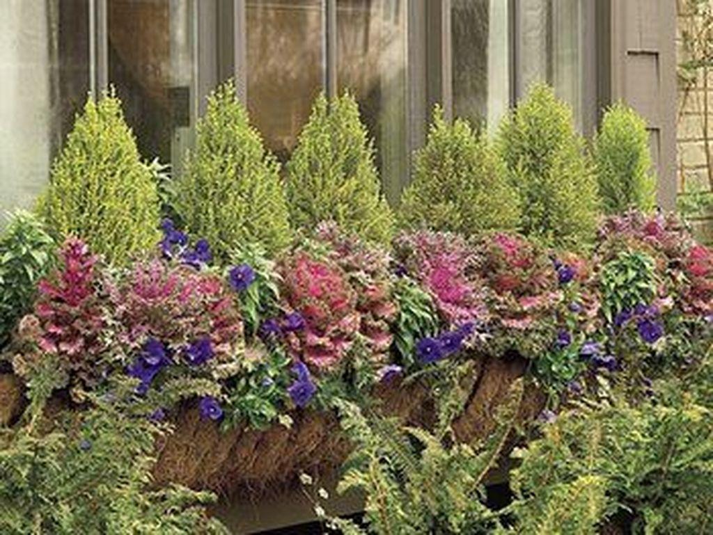 Beautiful Fall Window Boxes Design Ideas 18