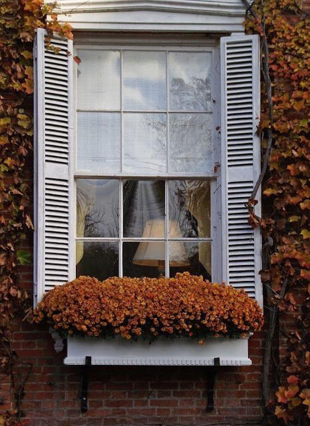 Beautiful Fall Window Boxes Design Ideas 21
