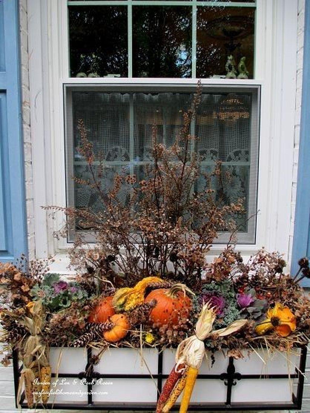 Beautiful Fall Window Boxes Design Ideas 28