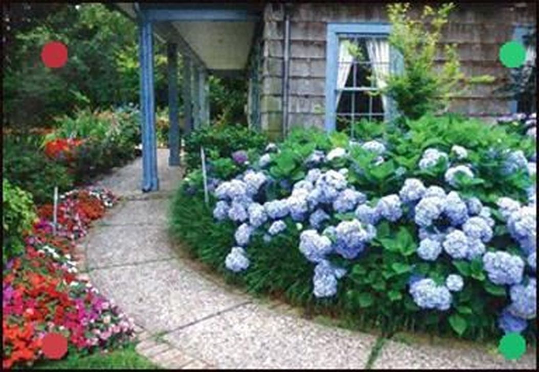 Beautiful Hydrangea Design Ideas Landscaping Your Front Yard 09