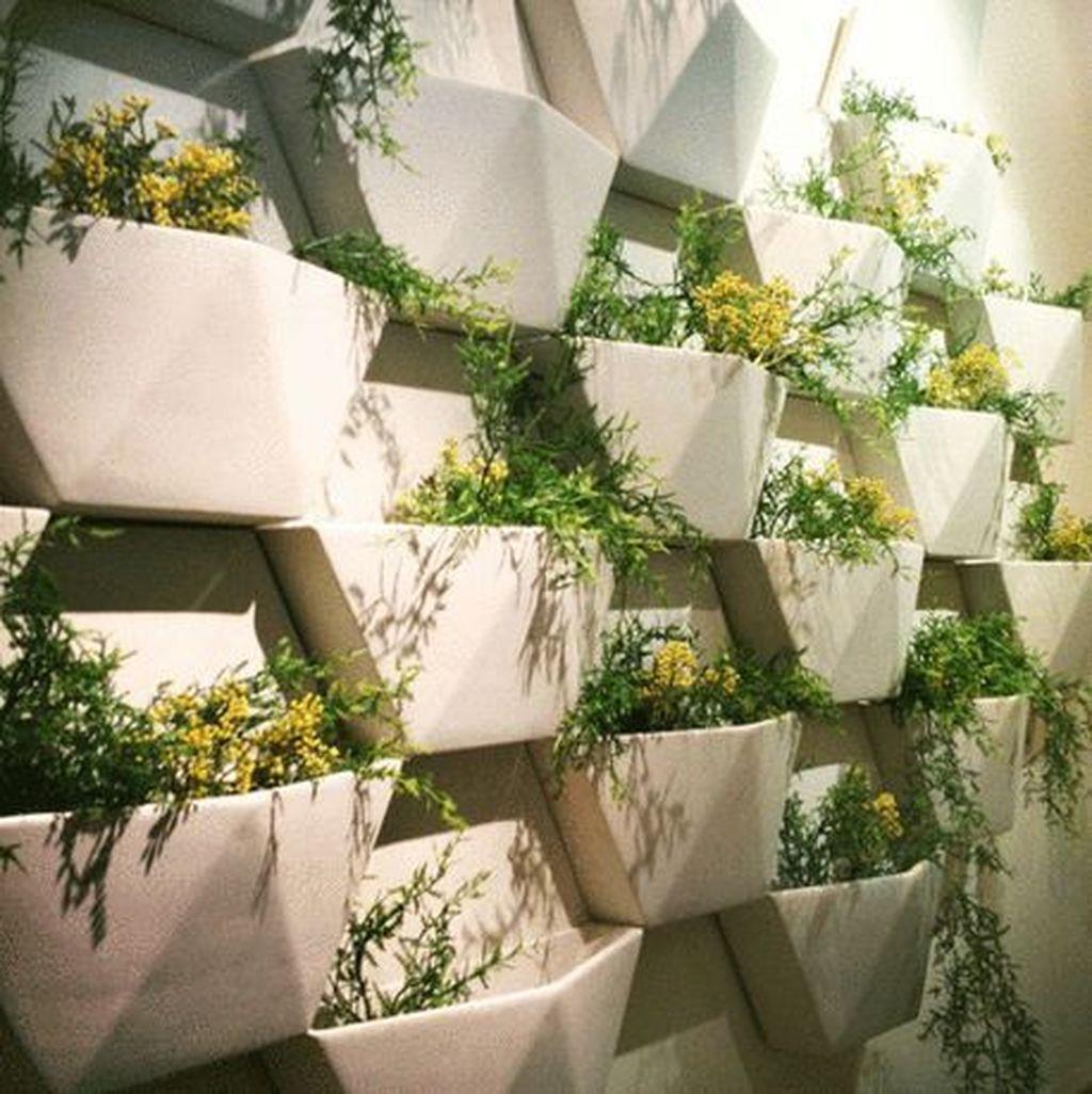 Gorgeous Vertical Garden Ideas Wall Decor 02
