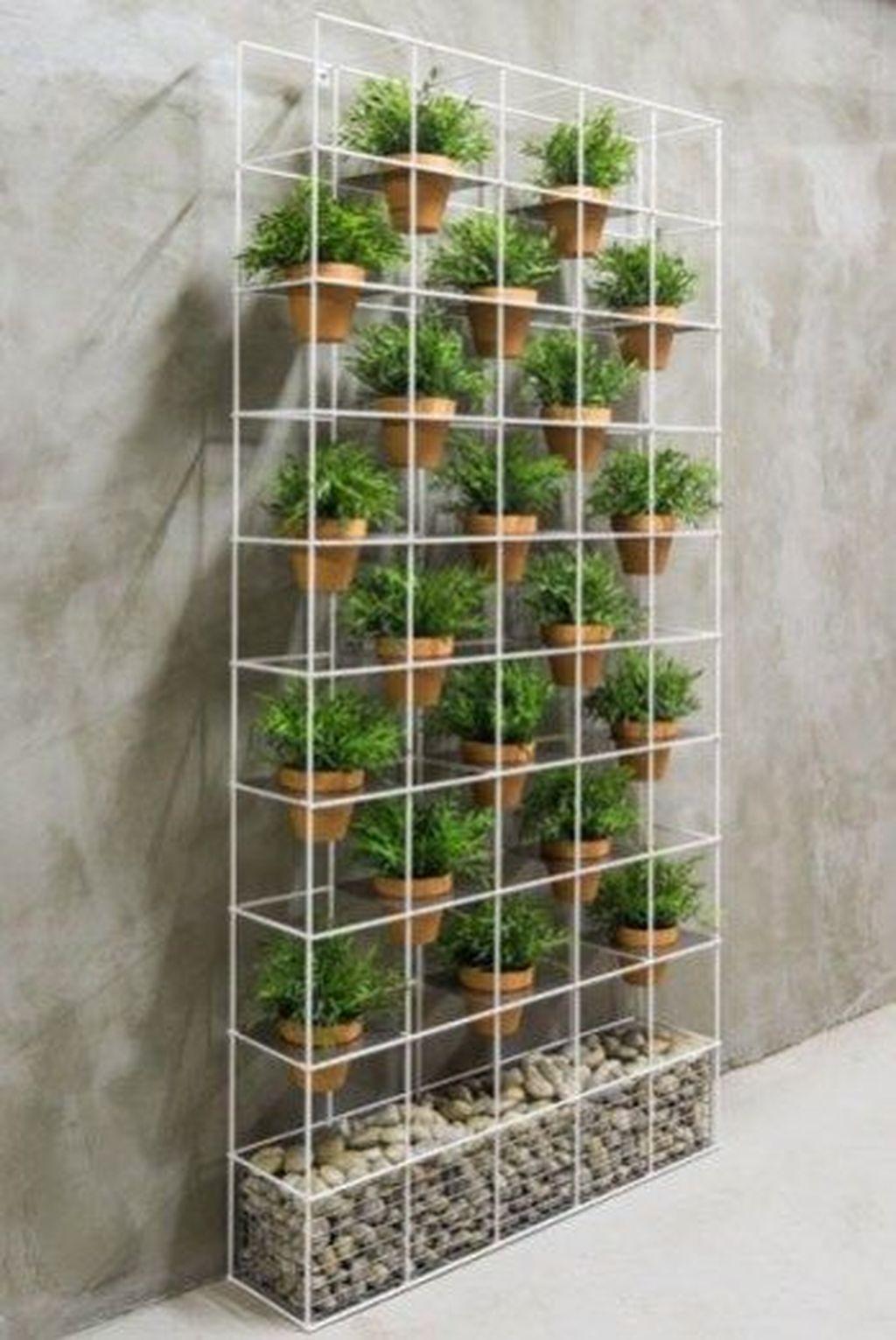 Gorgeous Vertical Garden Ideas Wall Decor 09