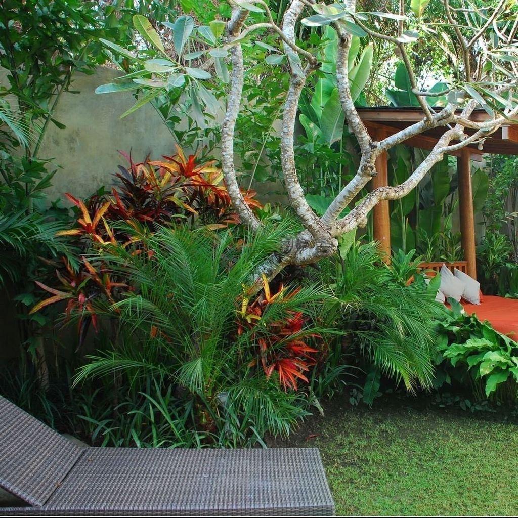 Lovely Tropical Garden Design Ideas 06