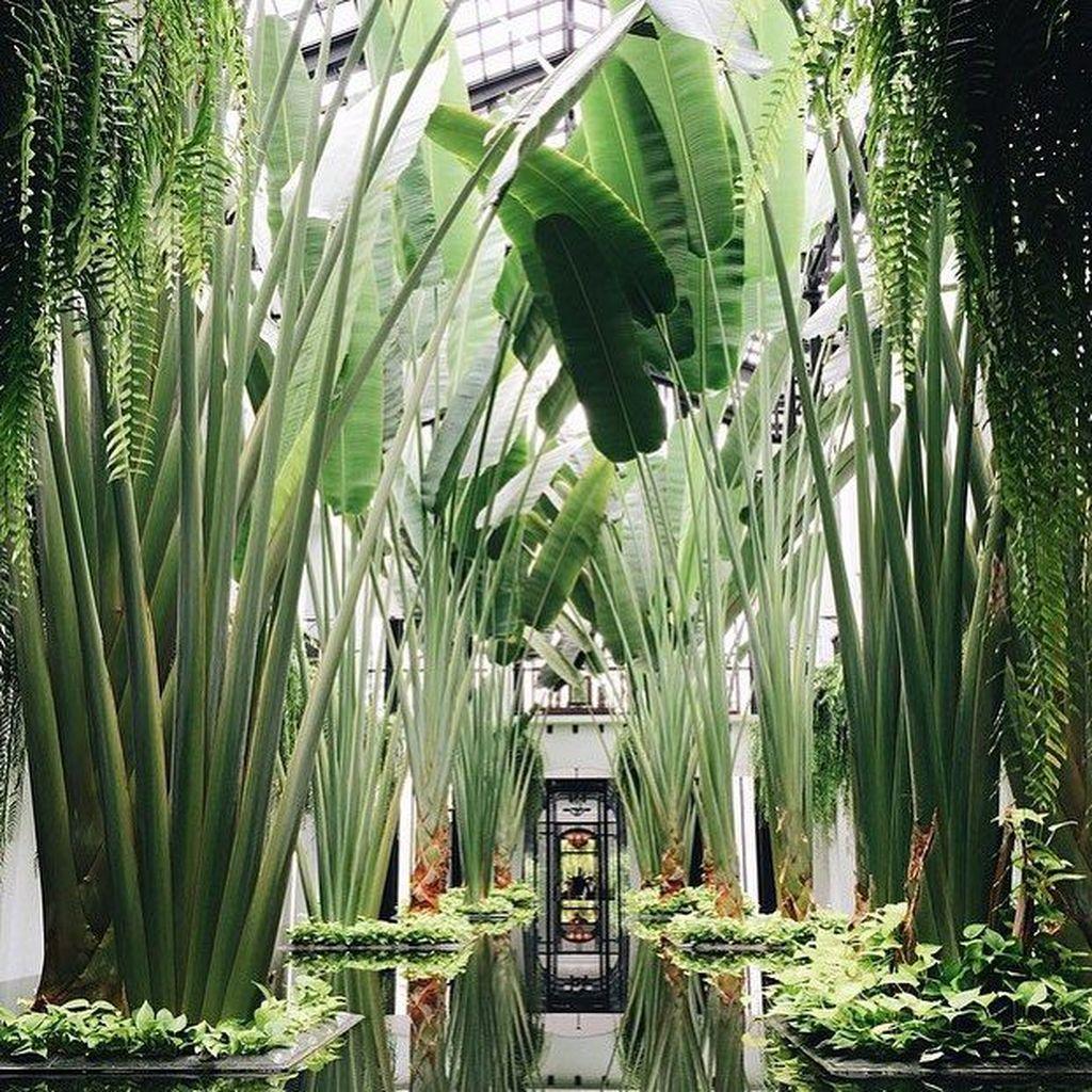 Lovely Tropical Garden Design Ideas 08