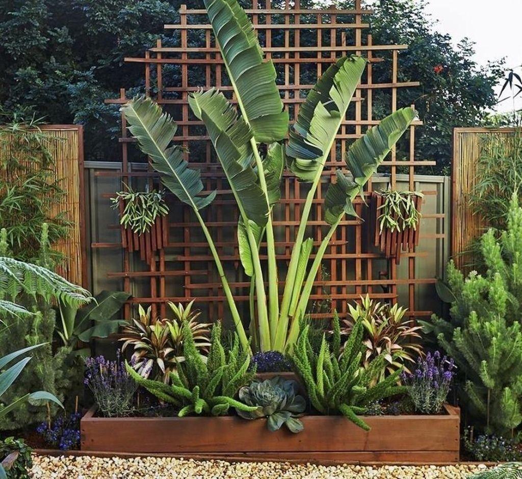 Lovely Tropical Garden Design Ideas 09