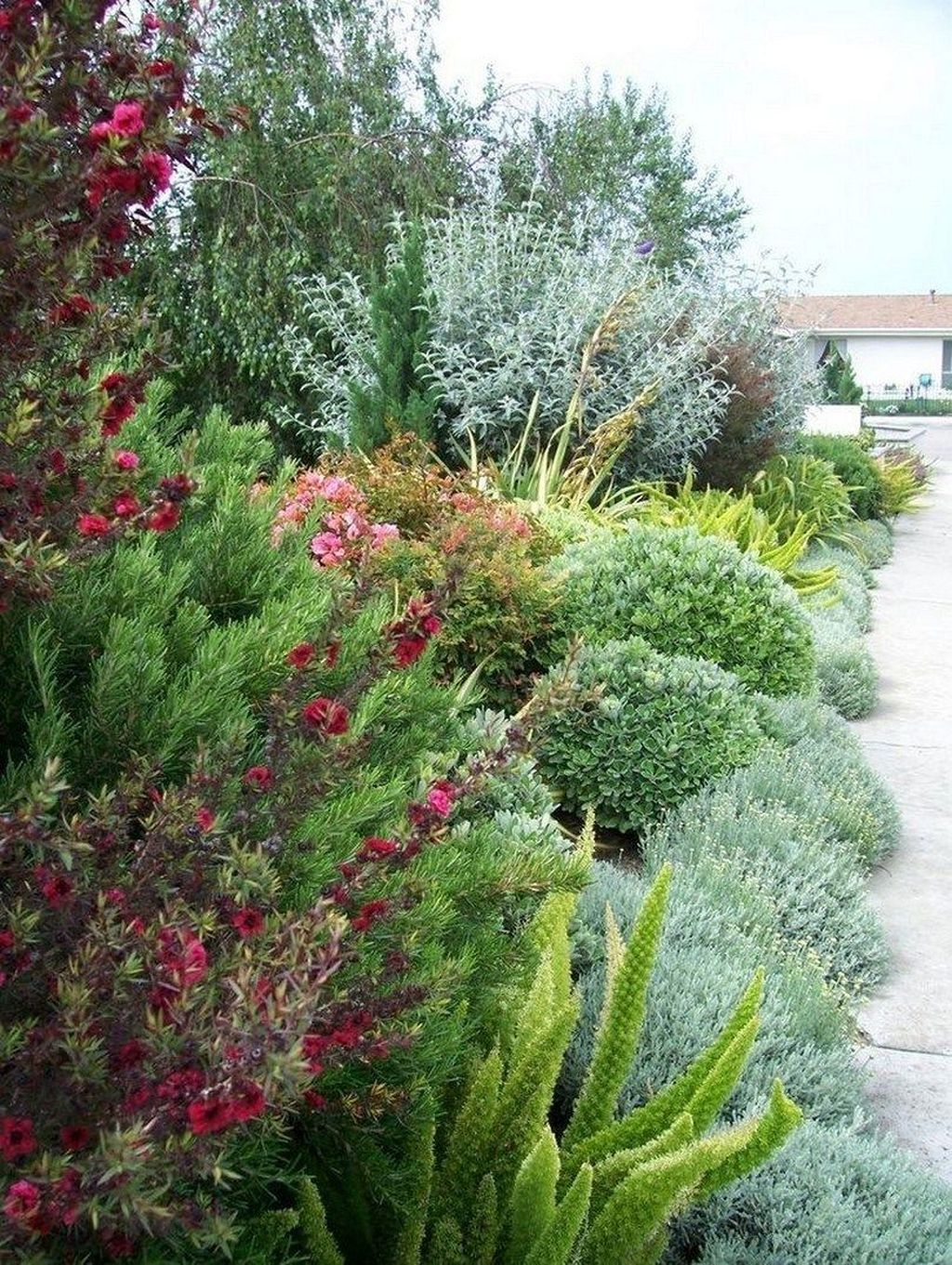 Popular Xeriscape Landscape Ideas For Your Front Yard 22