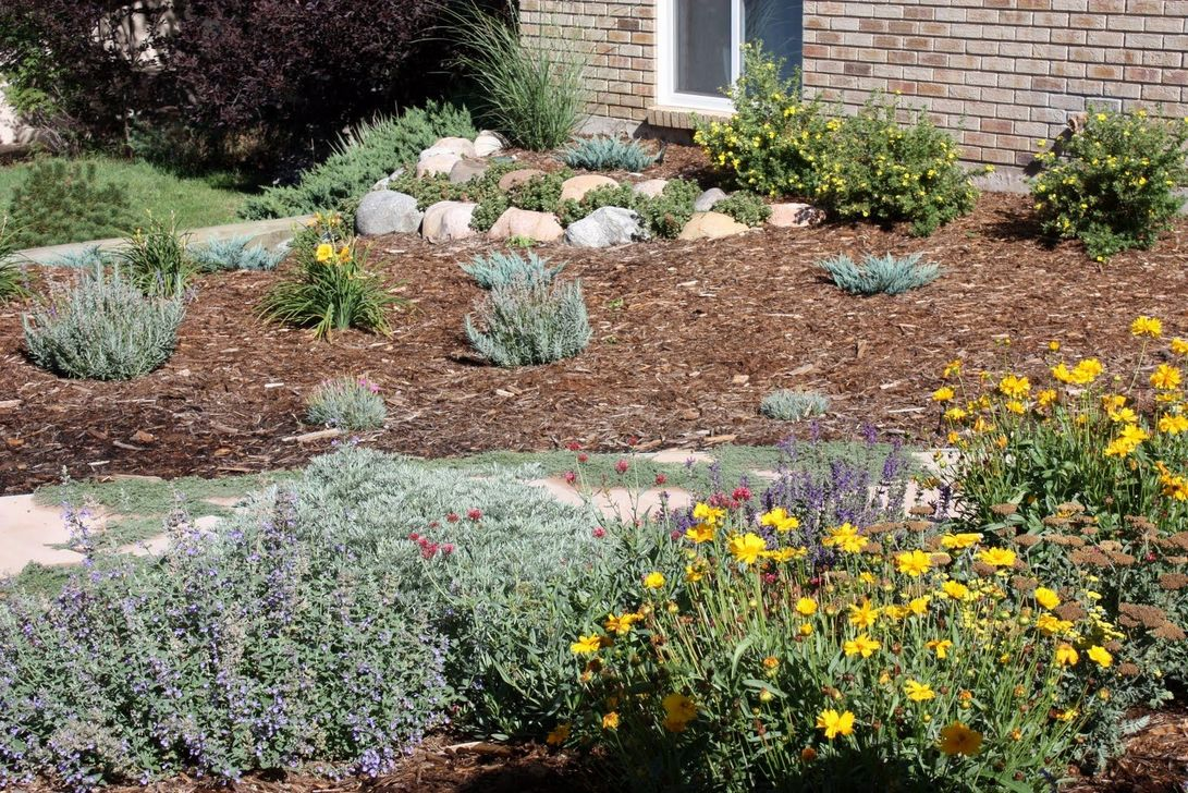 Popular Xeriscape Landscape Ideas For Your Front Yard 29