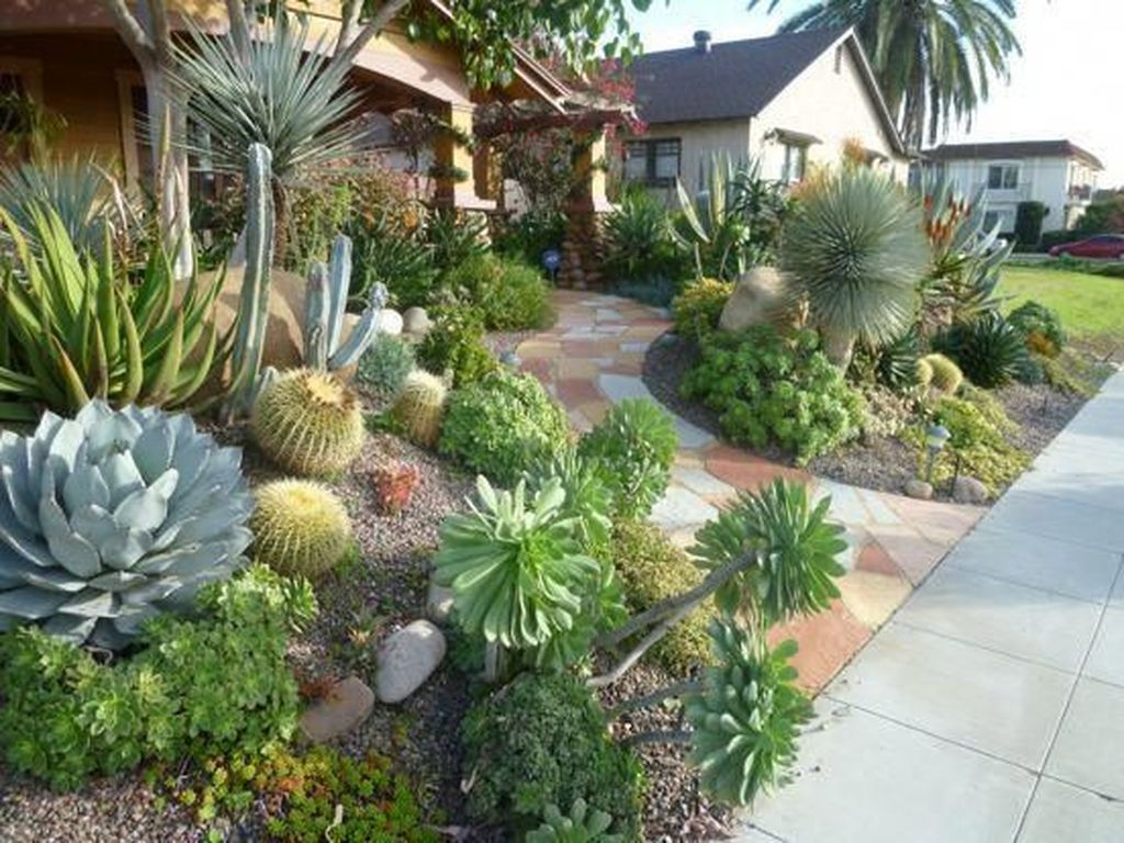 Popular Xeriscape Landscape Ideas For Your Front Yard 34