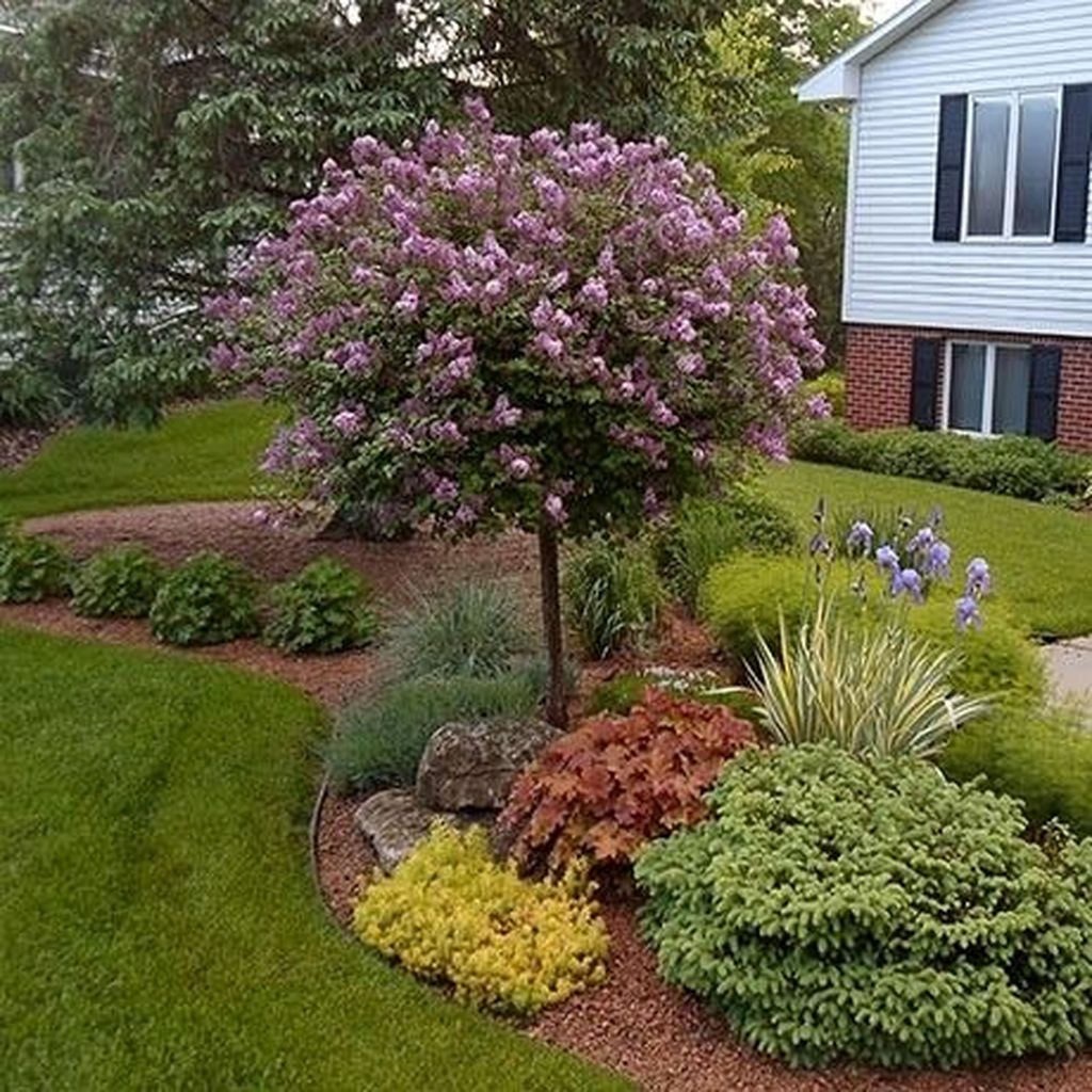 Wonderful Evergreen Landscape Ideas For Front Yard 30