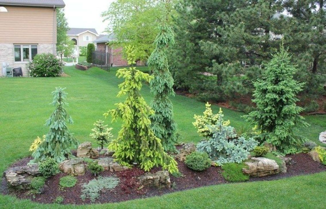 Wonderful Evergreen Landscape Ideas For Front Yard 32