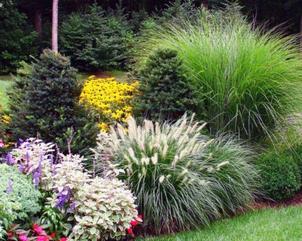 Wonderful Evergreen Landscape Ideas For Front Yard 33