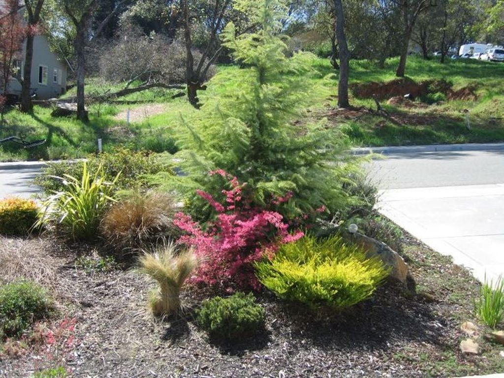 Wonderful Yard No Grass Design Ideas 12