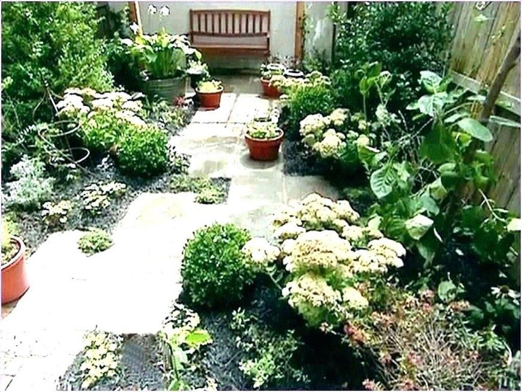 Wonderful Yard No Grass Design Ideas 13