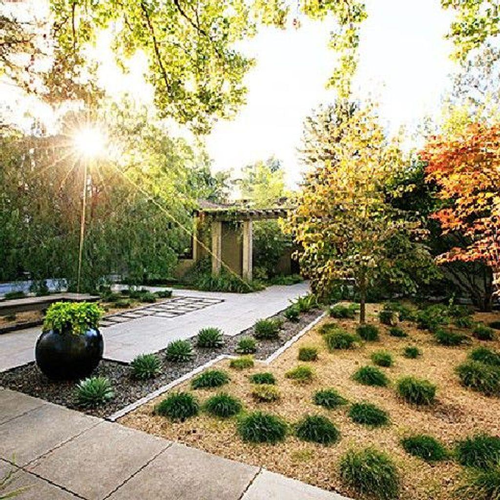Wonderful Yard No Grass Design Ideas 23