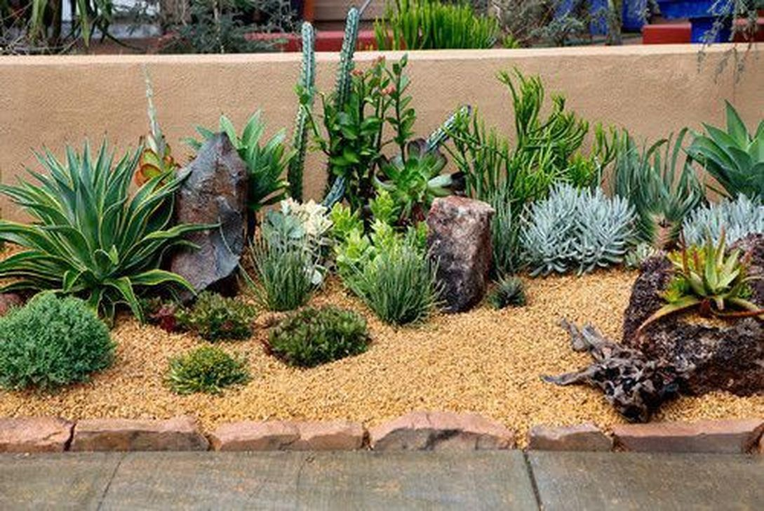 Awesome Succulent Front Yard Landscaping Ideas 05