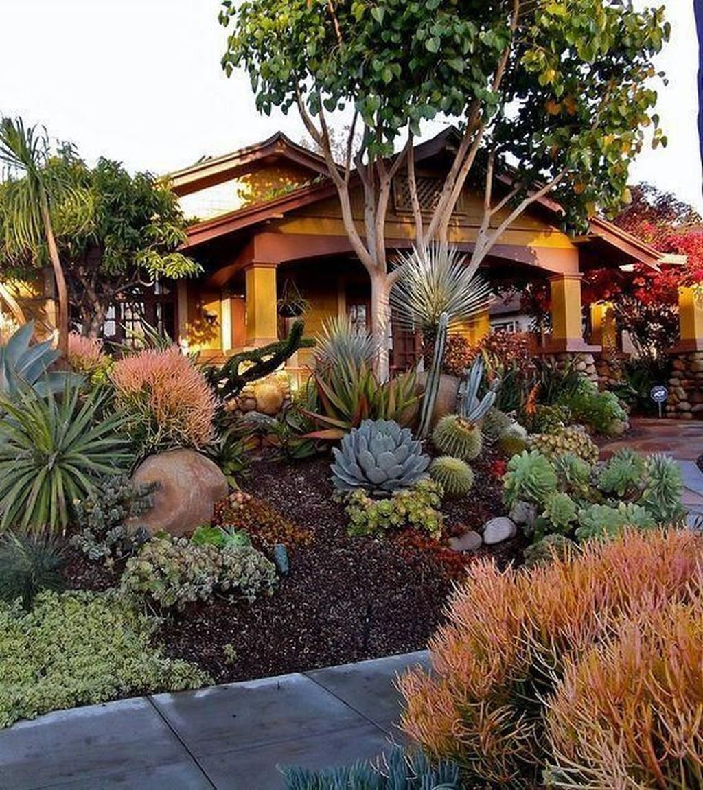 Beautiful Cactus Landscaping Ideas For Your Front Yards Decor 01