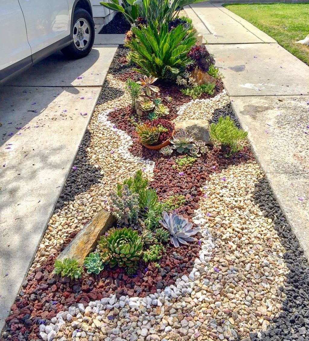 Beautiful Cactus Landscaping Ideas For Your Front Yards Decor 12