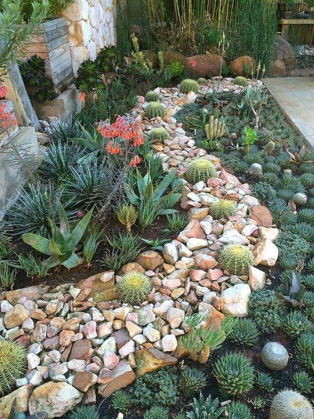 Beautiful Cactus Landscaping Ideas For Your Front Yards Decor 18