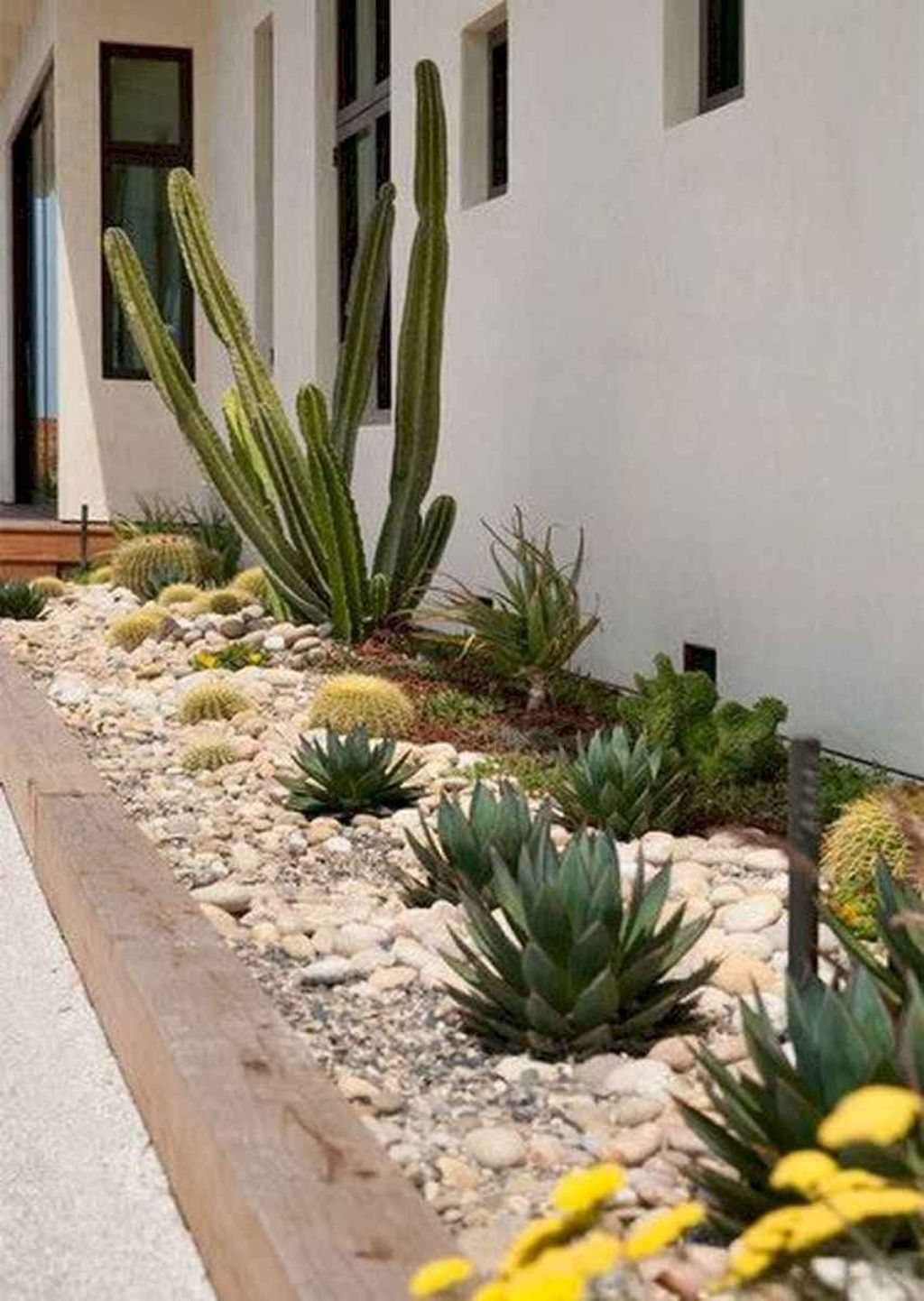 Beautiful Cactus Landscaping Ideas For Your Front Yards Decor 23